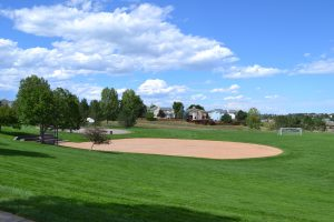 Toepfer Park - Highlands Ranch