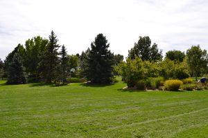 Springer Park - Highlands Ranch, CO
